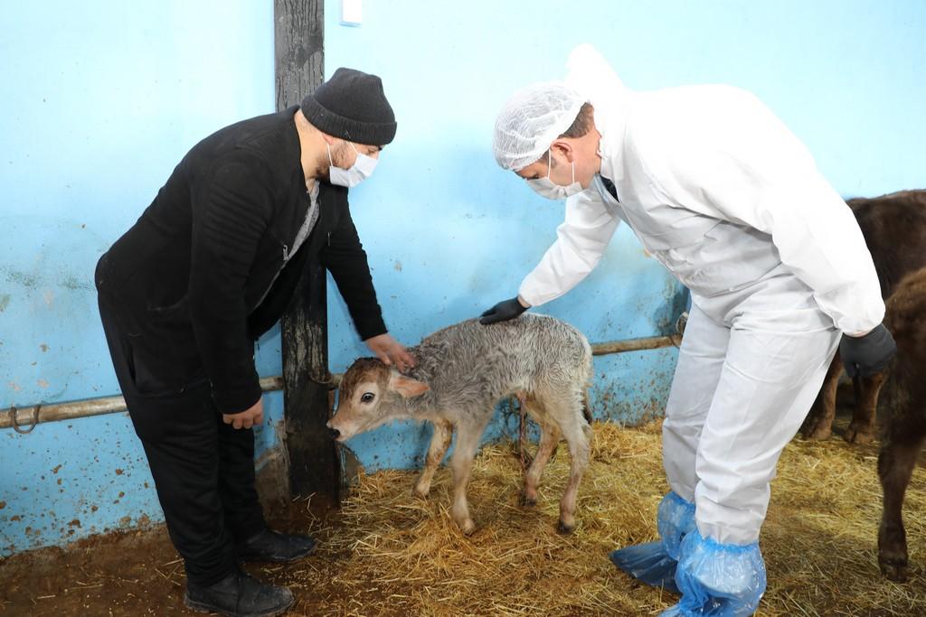 'Köyümde Yaşamak için Bir Sürü Nedenim Var' Projesinden 22 Bin Hayvan Desteği