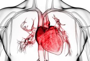 Kalp ameliyatlarında 'Göğüs Kesme' devrini bitiren yöntem